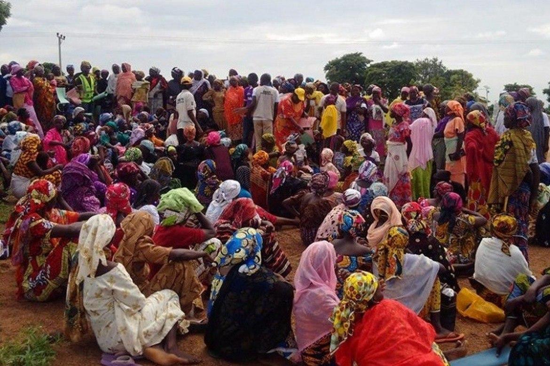 Nigeria: Enker på flukt. Foto: WWM